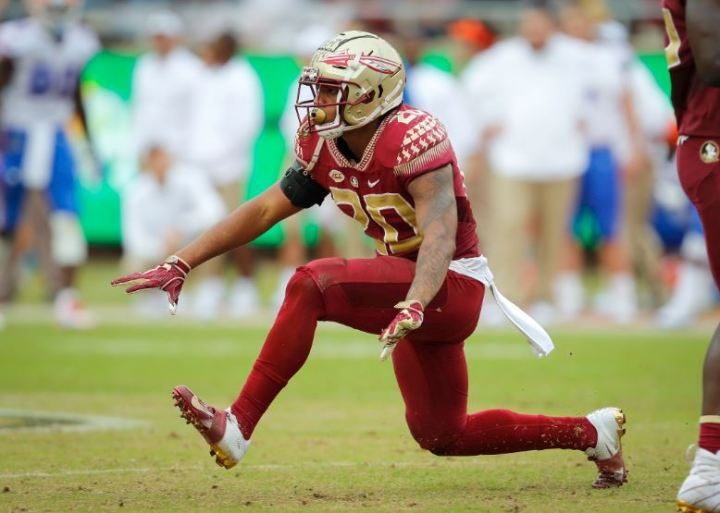 FSU Football: Defensive Underclassmen to be Optimistic for in 2019
